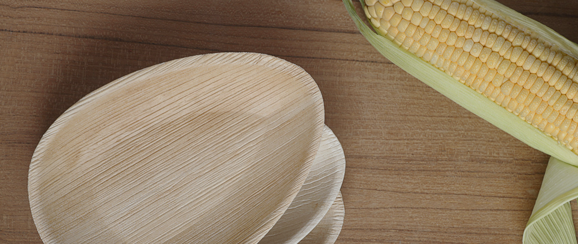 Eco-friendly. & Eco-friendly Leaf Plates - Buy Online | Disposable Areca Leaf Plate ...